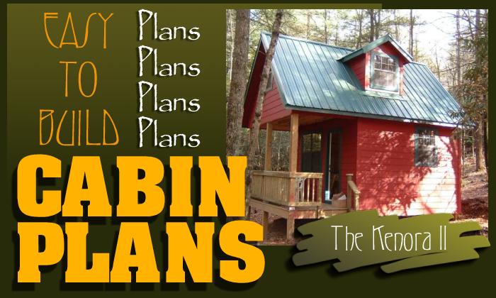 Wondrous Easy To Build Cabin Plans Largest Home Design Picture Inspirations Pitcheantrous